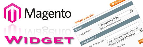 Magento widget